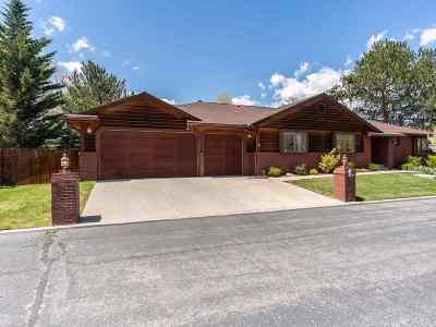 Reno Single Family Home Active/Pending-Call: 4375 Interlaken Court