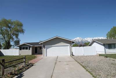 Gardnerville Single Family Home For Sale: 1273 Bolivia
