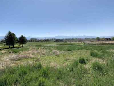 Genoa Residential Lots & Land For Sale: 271 Genoa Highlands Cir