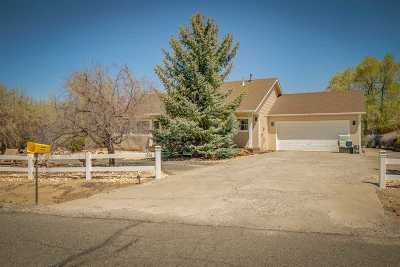Minden Single Family Home Active/Pending-Call: 1316 Cathy #LN