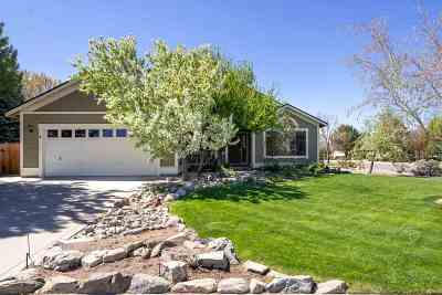 Minden NV Single Family Home Active/Pending-Call: $459,999