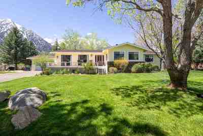 Gardnerville Single Family Home Active/Pending-Loan: 744 Indian Trail