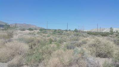 Yerington Residential Lots & Land For Sale: 7 Moyle Court
