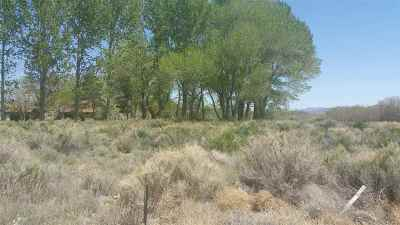 Yerington Residential Lots & Land For Sale: 8 Moyle Court