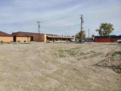Fernley Residential Lots & Land For Sale: 45 Locust St
