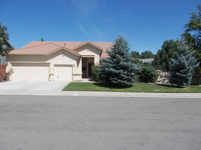 Single Family Home For Sale: 8709 Stonefly Ct.