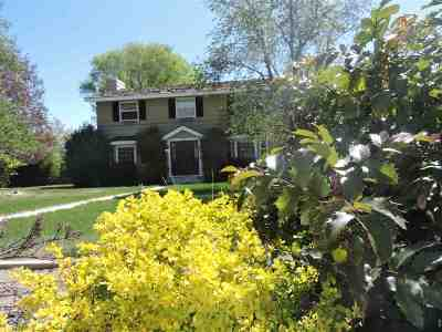 Carson City Single Family Home Active/Pending-Loan: 121 Plantation Dr