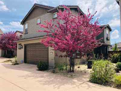 Reno Single Family Home For Sale: 2220 Heavenly View Trail