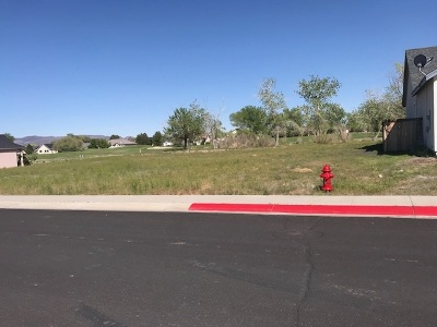Fernley Residential Lots & Land For Sale: 756 Divot Dr.