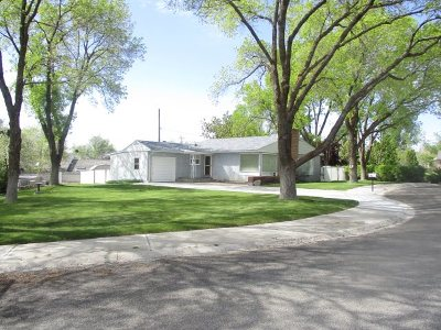 Winnemucca Single Family Home For Sale: 25 Bellevue Ave