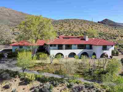 Carson City Single Family Home For Sale: 660 N Sutro Terrace