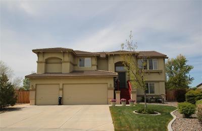 Sparks Single Family Home For Sale: 6933 Cinnabar Court