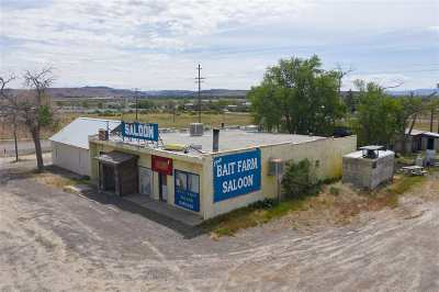 Commercial For Sale: 1080 E Highway 50