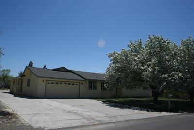Gardnerville Single Family Home Active/Pending-Call: 837 Russell Way