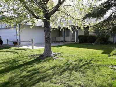 Carson City Single Family Home For Sale: 2521 Woodcrest Lane