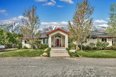 Gardnerville Single Family Home Active/Pending-Loan: 889 Foothill Rd