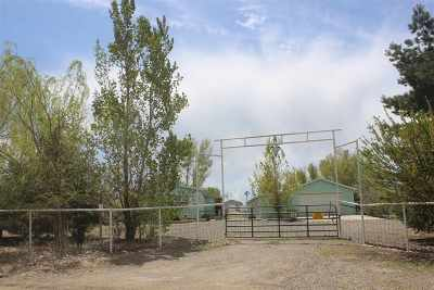 Winnemucca Manufactured Home For Sale: 80 Youngberg Road