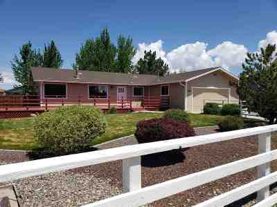 Gardnerville Single Family Home For Sale: 1313 Goldbug Court