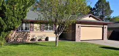 Sparks Single Family Home For Sale: 3314 Clan Alpine