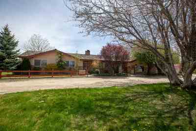Gardnerville Single Family Home For Sale: 1069 East Valley Road