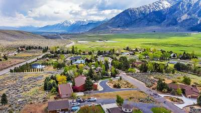 Carson City Single Family Home For Sale: 3411 Bernese Court
