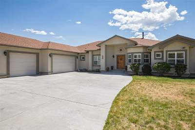 Carson City Single Family Home For Sale: 1319 Buzzys Ranch Road