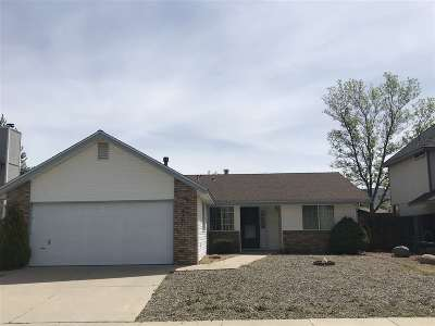 Carson City Single Family Home For Sale: 2321 Diane