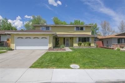 Sparks Single Family Home For Sale: 490 Steffanie Way