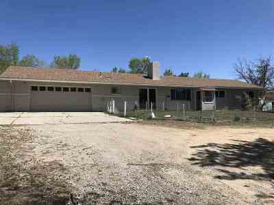 Washoe Valley Single Family Home Active/Pending-Loan: 1390 Brenda Way