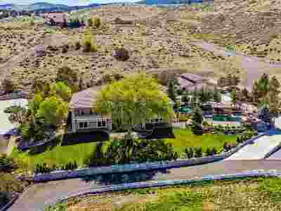 Washoe County Single Family Home For Sale: 1180 Paddock Lane
