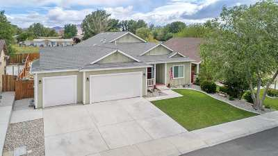 Fernley Single Family Home For Sale: 716 Canary Cir