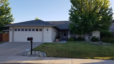 Sparks Single Family Home For Sale: 1040 Cartago