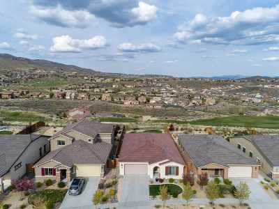 Reno Single Family Home For Sale: 1690 Heavenly View