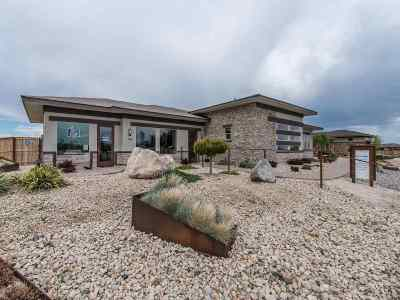 Fernley Single Family Home For Sale: 162 Pelican Way