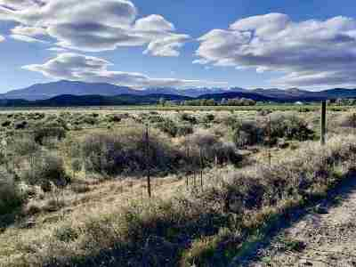 Gardnerville Residential Lots & Land For Sale: Parcel B Windmill