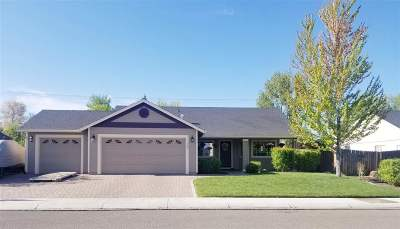Gardnerville Single Family Home Active/Pending-Loan: 1347 E Marion Russell
