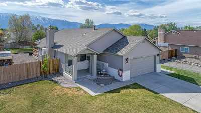 Gardnerville Single Family Home Active/Pending-House: 754 Long Valley Rd