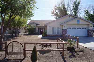 Yerington Single Family Home Active/Pending-Loan: 50 State Route 208