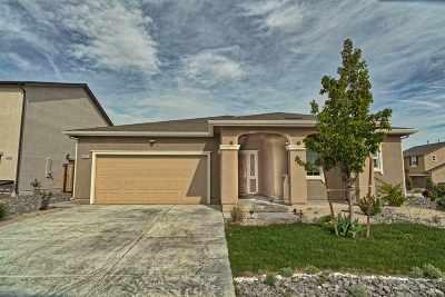 Single Family Home For Sale: 14300 Murdoch Dr