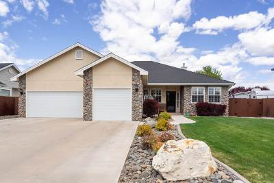 Gardnerville Single Family Home Active/Pending-Loan: 1292 Kimbles