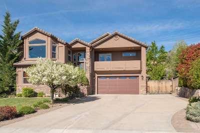 Reno Single Family Home For Sale: 3481 Eagle Ridge Ct