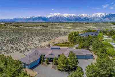 Gardnerville Single Family Home For Sale: 1344 View Pointe