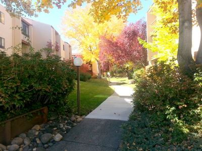 Reno Condo/Townhouse For Sale: 2700 Plumas St #321 #321