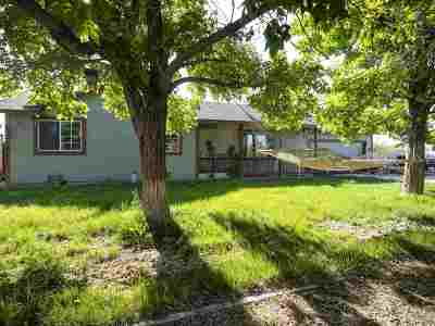 Fernley Single Family Home For Sale: 1029 Opal Way