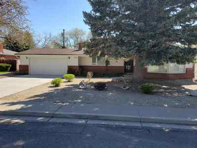 Carson City Single Family Home For Sale: 813 Lexington Ave
