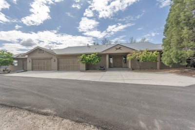 Washoe County Single Family Home For Sale: 10450 Thomas Creek Road