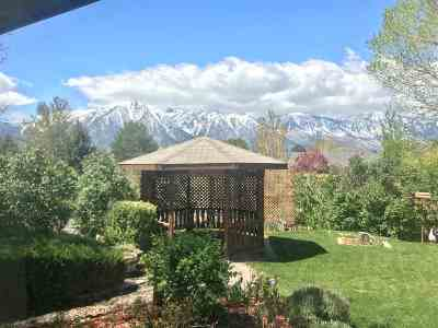 Gardnerville Single Family Home Active/Pending-Loan: 1188 Manhattan Way