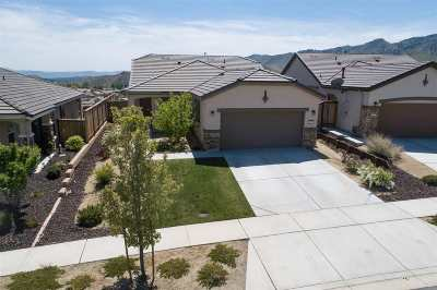 Reno Single Family Home For Sale: 1113 Dutch Hollow Trail