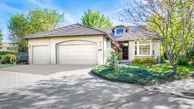 Reno Single Family Home For Sale: 299 Nicholaus
