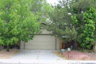Carson City Single Family Home For Sale: 54 Granite Way